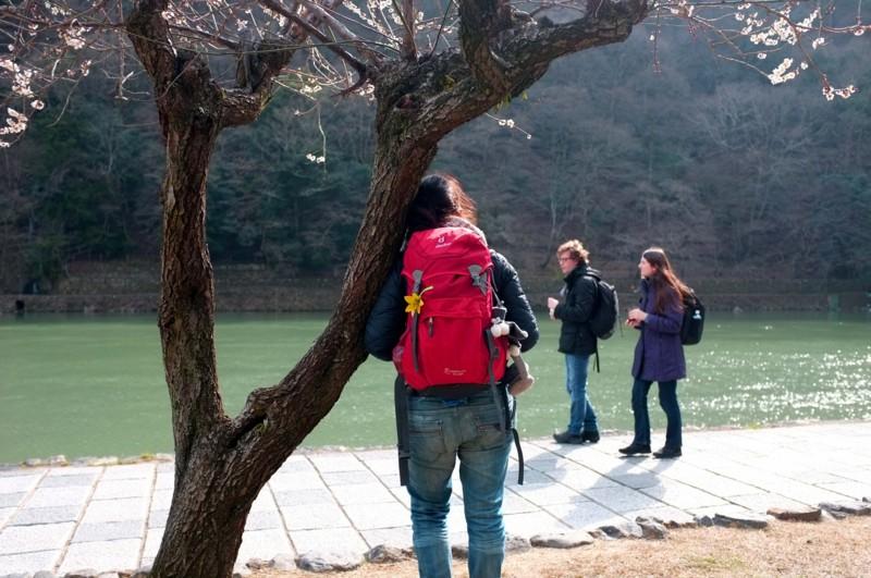 京都新聞写真コンテスト 異邦人