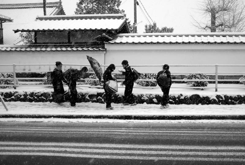 京都新聞写真コンテスト 遅刻するぞ!