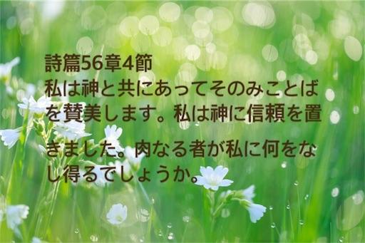 f:id:jw1972w:20181107222329j:image