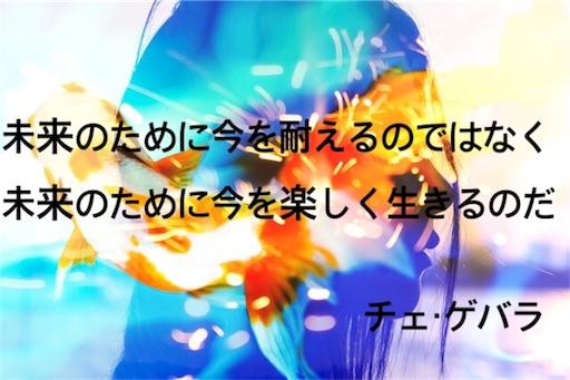 f:id:jw1972w:20190416094456j:image