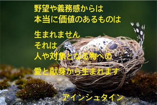 f:id:jw1972w:20190419024242j:image