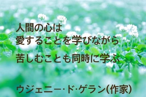 f:id:jw1972w:20190831221712j:image