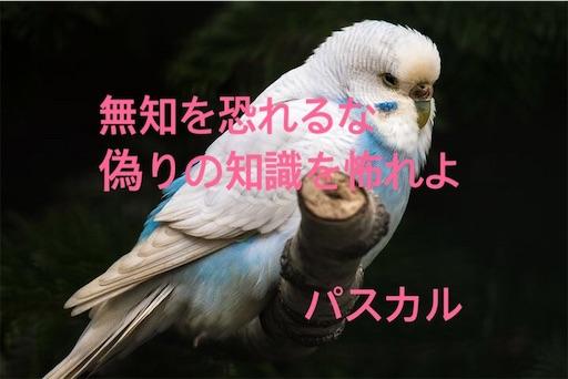 f:id:jw1972w:20190831222403j:image