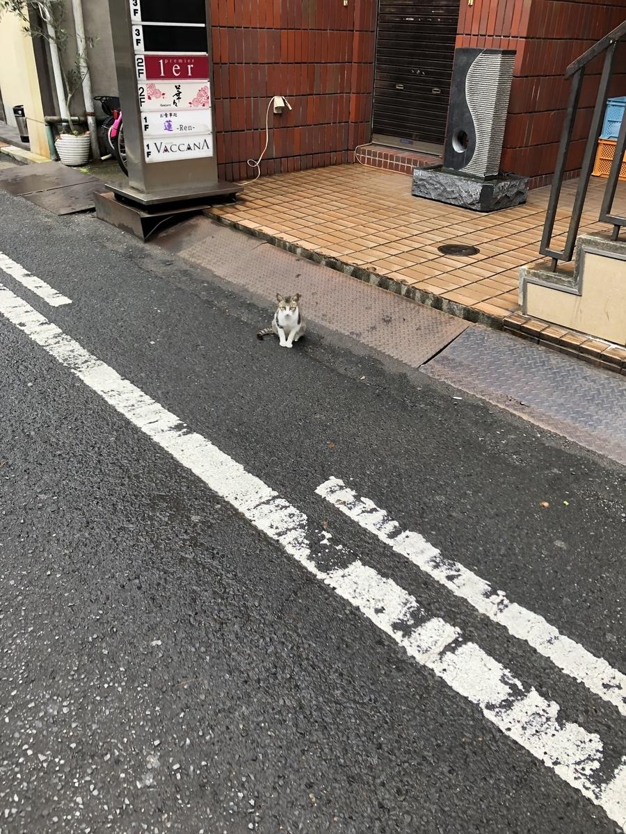 f:id:jwatanabe:20200806131347j:plain