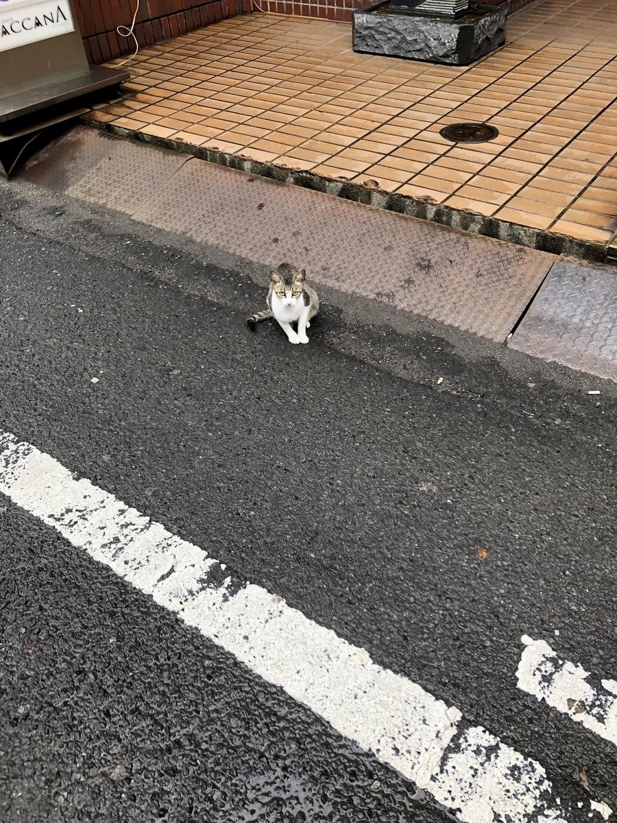 f:id:jwatanabe:20200806131418j:plain