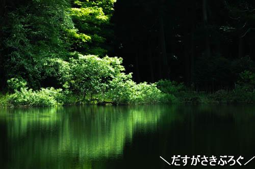 f:id:jyokigen22ra:20190614175145j:plain
