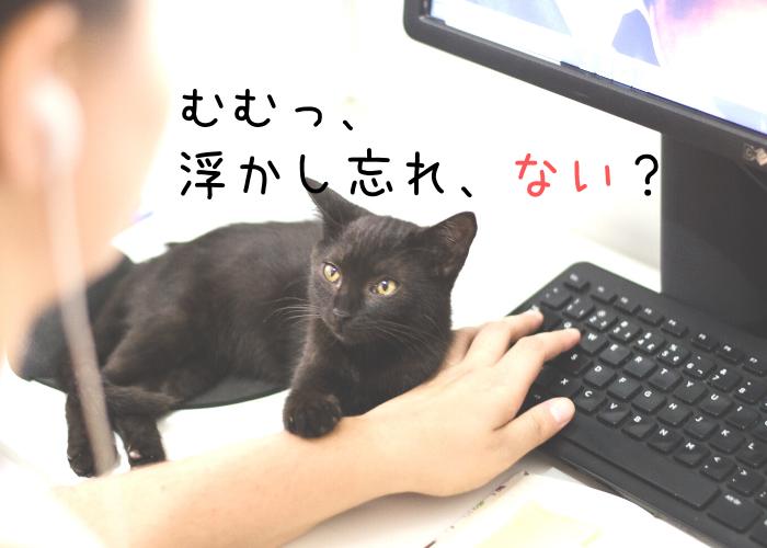 f:id:jyokigen22ra:20191027225712p:plain