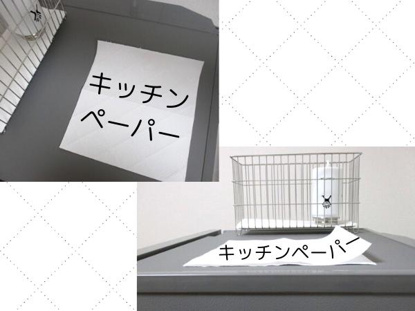 f:id:jyokigen22ra:20200111134645p:plain