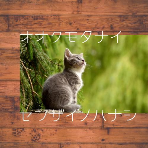 f:id:jyokigen22ra:20200411093642p:plain