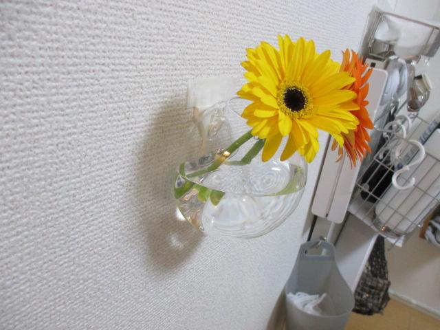 f:id:jyokigen22ra:20201231124418j:plain