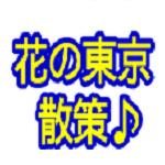 f:id:jyonigayuku:20170702105121p:plain