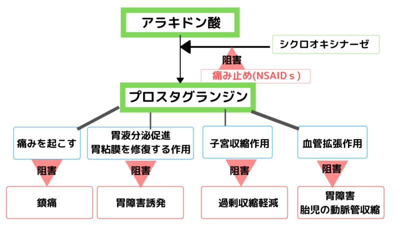 f:id:jyoseinoomamori:20191031051202p:plain