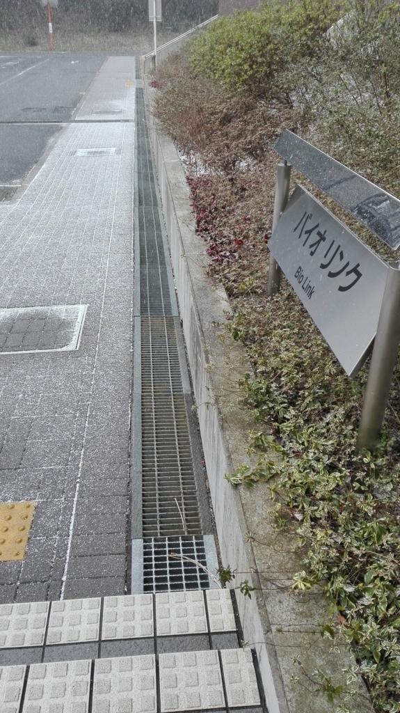 f:id:jyouhou-seibutugaku:20180126153948j:plain