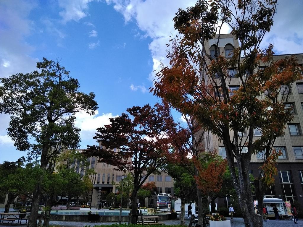 f:id:jyouhou-seibutugaku:20181026164240j:plain