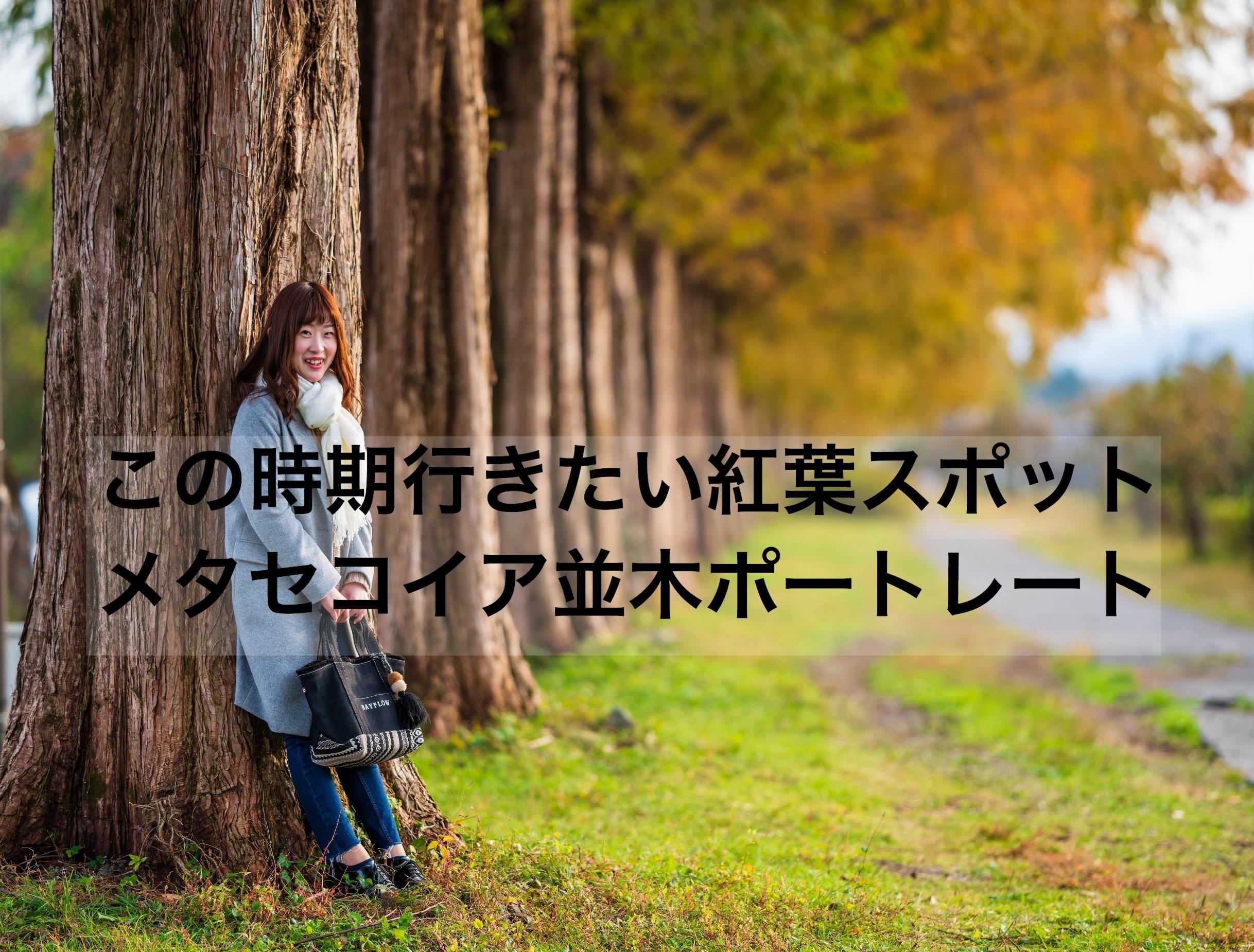 f:id:k-akoi1019:20181130230234j:image