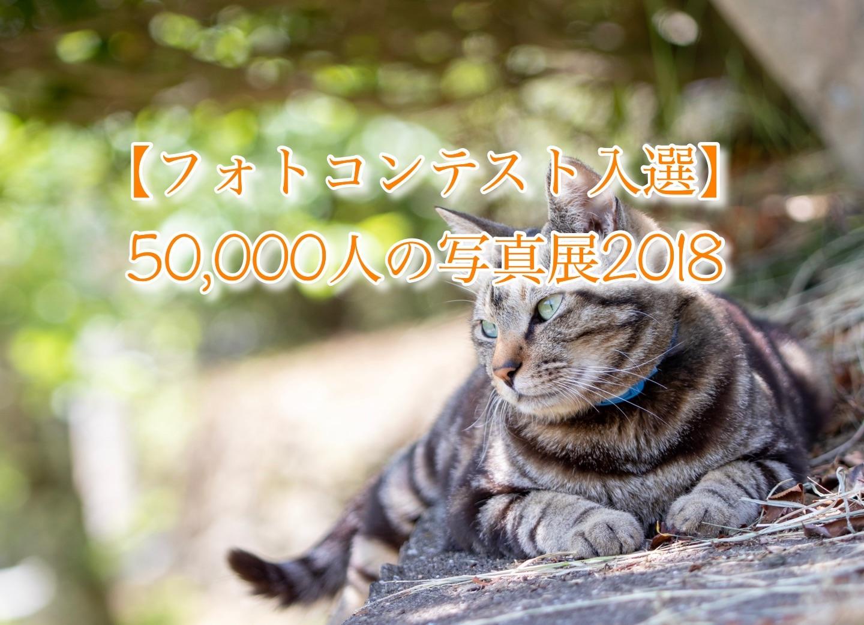 f:id:k-akoi1019:20190102124901j:image