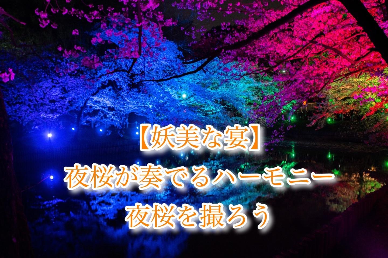 f:id:k-akoi1019:20190421202304j:image