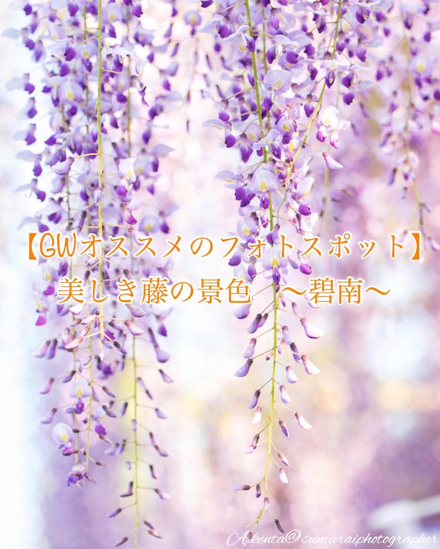 f:id:k-akoi1019:20190503103254j:image