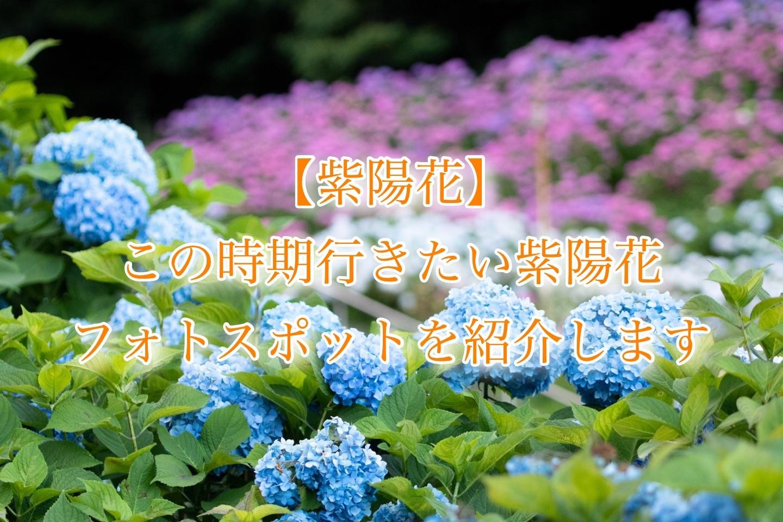 f:id:k-akoi1019:20190619123601j:image