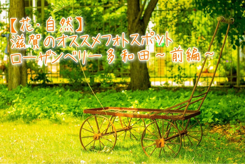 f:id:k-akoi1019:20190826015740j:image