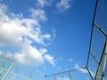 [青空][空][ブルー][雲]