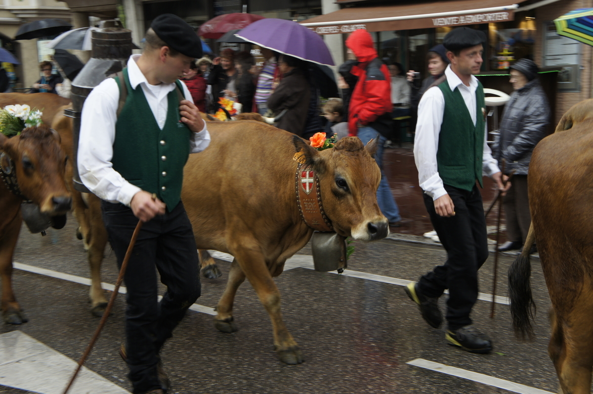 アヌシー収穫祭