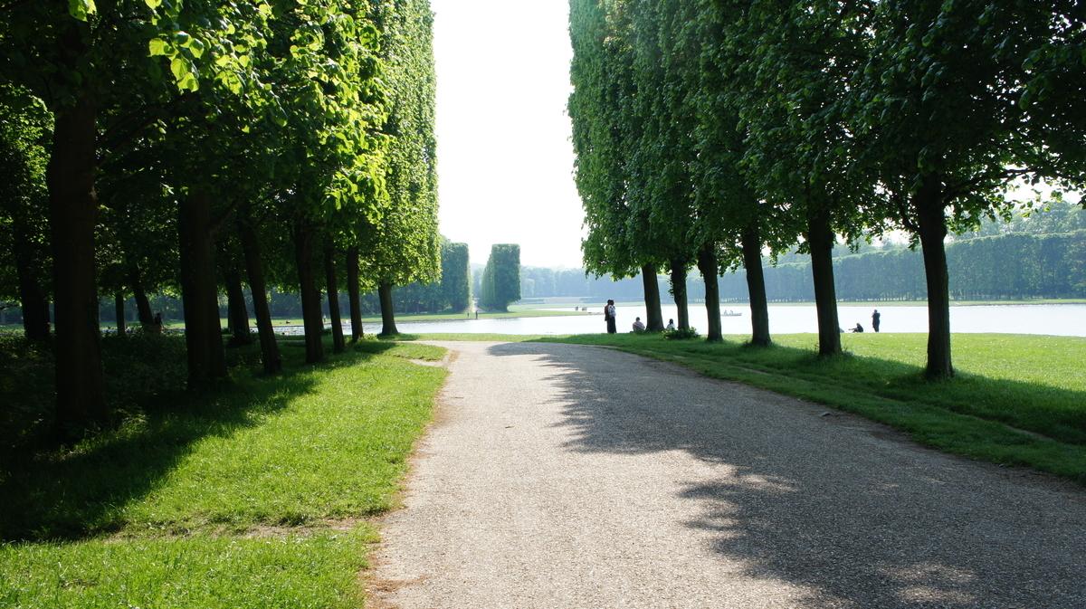 ヴェルサイユ庭園 並木道
