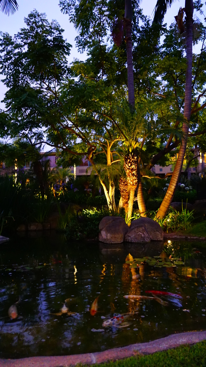 Sheraton La Jolla Hotel シェラトン・ラ・ホーヤ