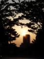 長居公園からの夕陽
