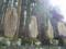大峯山洞川温泉