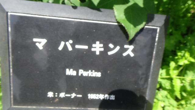 f:id:k-mutumi:20180512022758j:plain