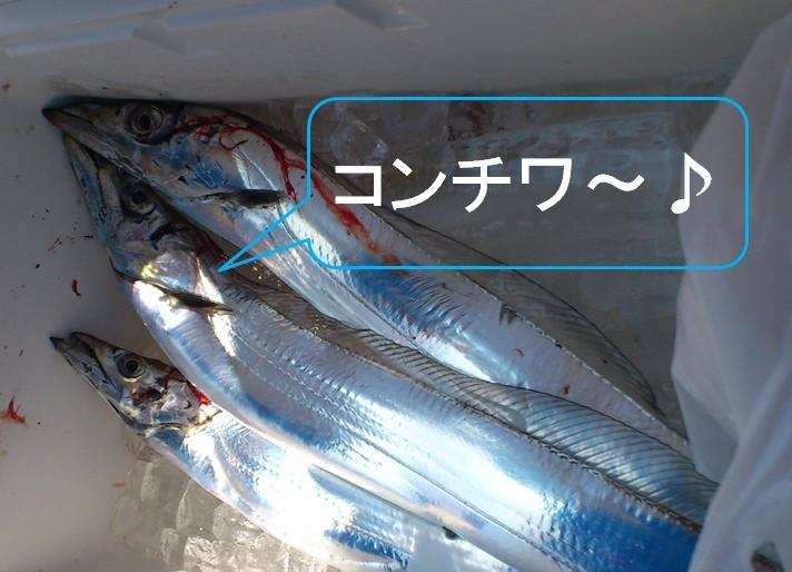 f:id:k-pac:20120907202417j:image