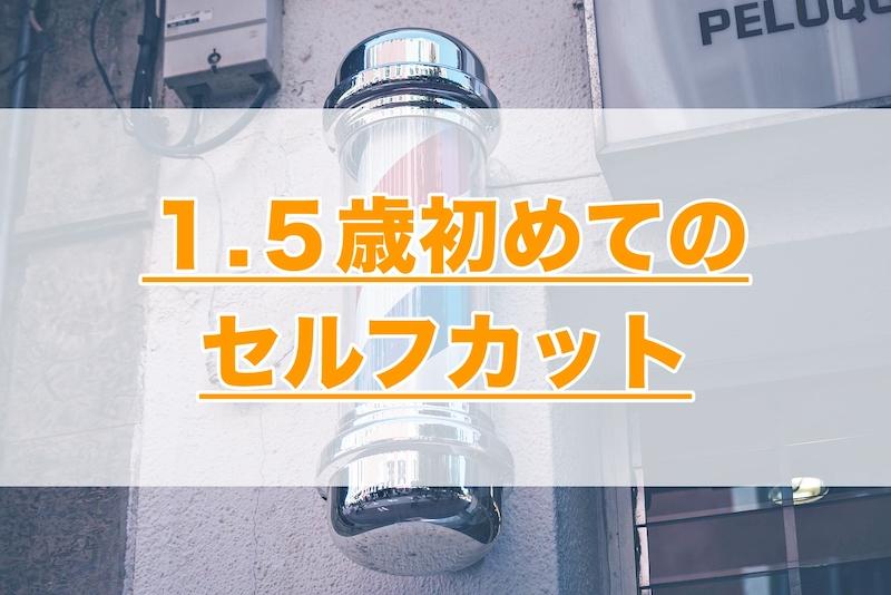 f:id:k-suke_ic:20210822203158j:plain