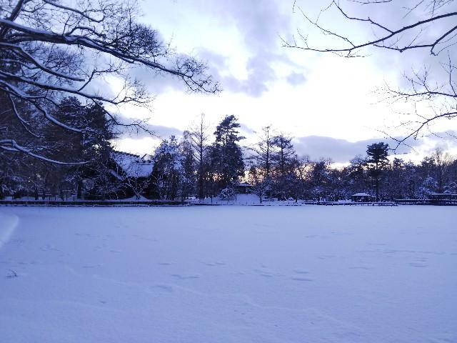 f:id:k-sumikawa:20191214024143j:plain