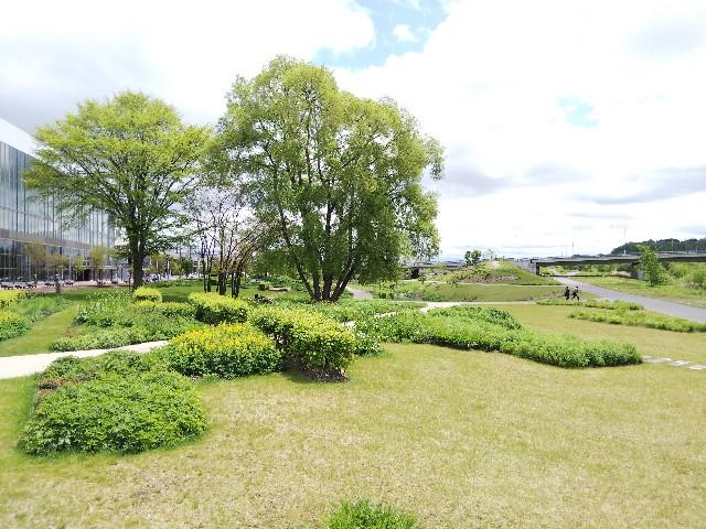 f:id:k-sumikawa:20200526154540j:image
