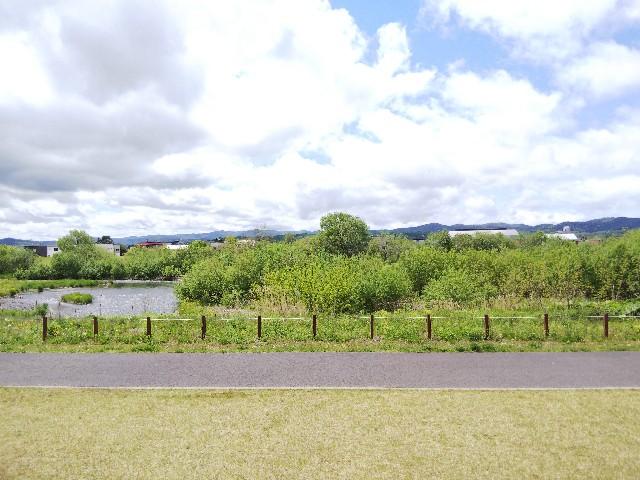f:id:k-sumikawa:20200526154654j:image