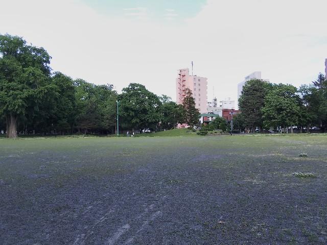 f:id:k-sumikawa:20200621202642j:image