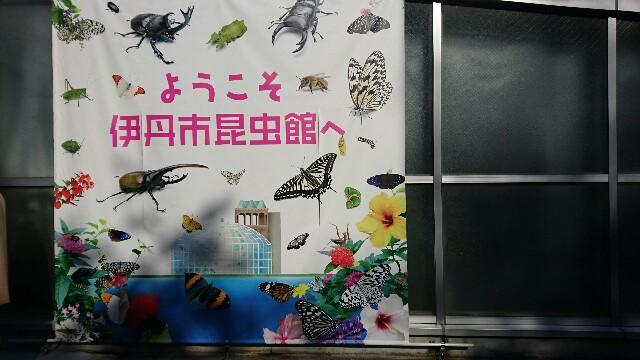 f:id:k-tokotoko:20170312190851j:image