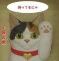 [西誠人][猫][木彫り]招き猫を彫ろう キャットカーヴィング -3