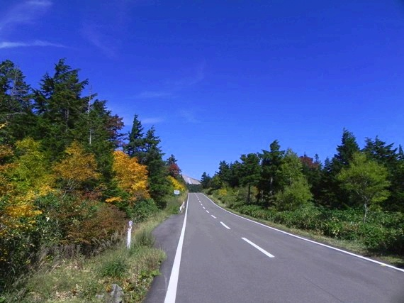 f:id:k9352009:20101002125044j:image