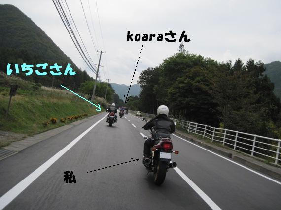 f:id:k9352009:20101018120432j:image