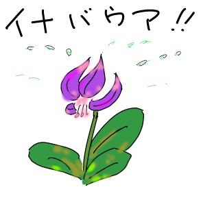f:id:k9352009:20120408092303j:image
