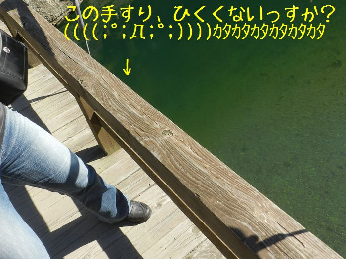 f:id:k9352009:20141104114727j:image