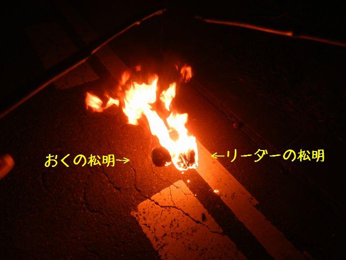 f:id:k9352009:20141114124530j:image