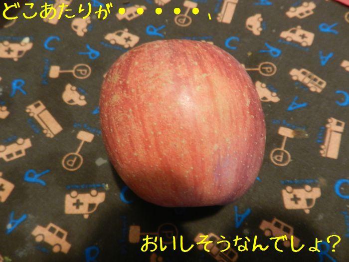 f:id:k9352009:20141211114145j:image