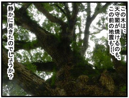 f:id:k9352009:20160808135612j:image