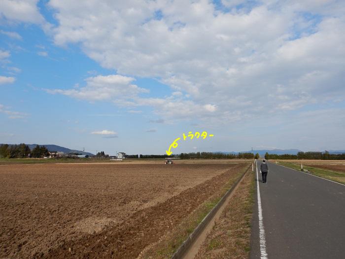 f:id:k9352009:20200416111735j:plain