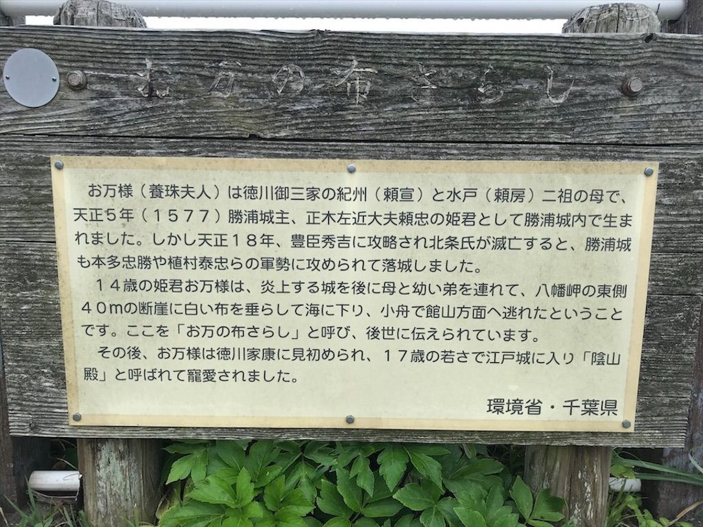 f:id:k_k_azuki:20200723103502j:image