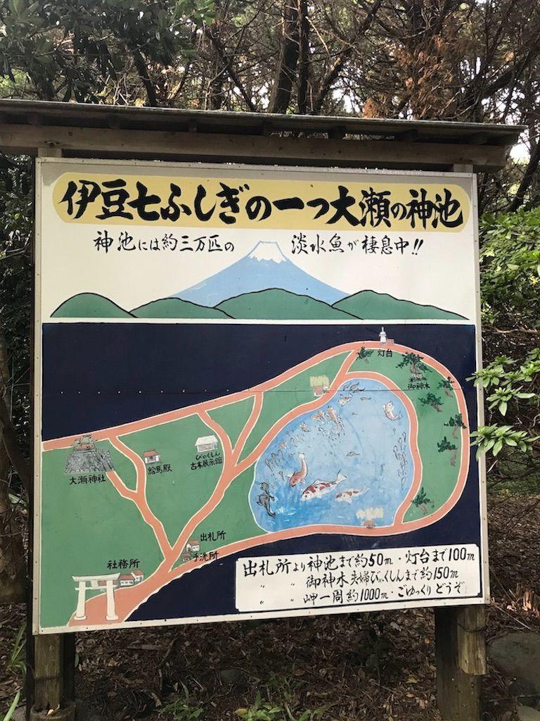 f:id:k_k_azuki:20200811142104j:image