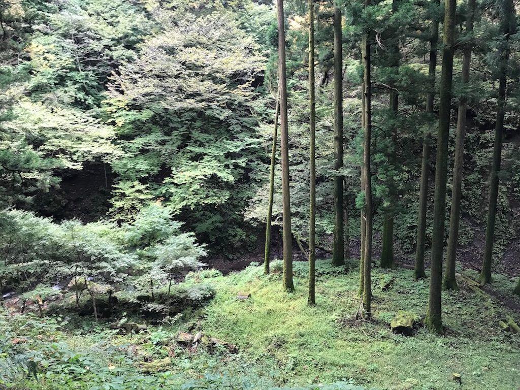 f:id:k_k_azuki:20201024122257j:image